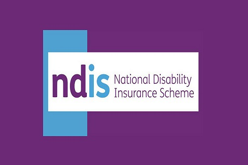 Supports the NDIS will fund in relation to employment.